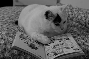 Существует ли зависимость от книг?