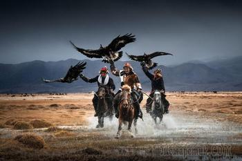 Охота с беркутом в Монголии в фотографиях
