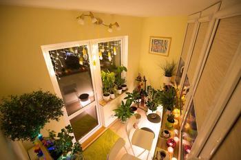 Сделали «зеленый» балкон, на котором приятно находиться круглый год