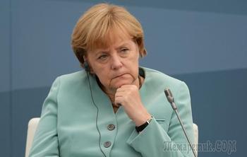«Меркель всему виной». Немецкий политолог о планах стрелка в Новой Зеландии