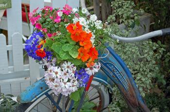 Вазоны для цветов из старых вещей