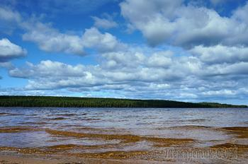 Заячья губа Онежского озера