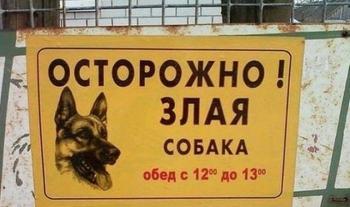 Уморительные таблички об очень злых собаках
