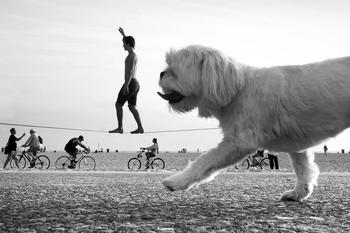 Нешаблонная перспектива в пляжных и уличных фотографиях Мойзеса Леви