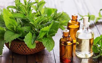 20 вариантов использования эфирного масла перечной мяты