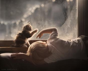 23 очаровательные фотографии, доказывающие, что вашему ребенку нужен кот