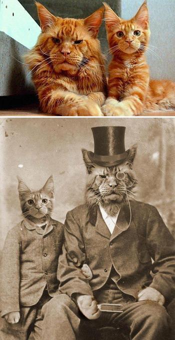 20 раз, когда люди устроили битву фотошоперов и получили на редкость смешные результаты