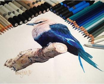 Живые рисунки