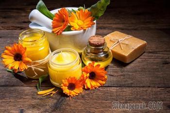 Календула – лечебные свойства и инструкция по применению