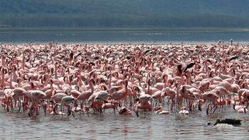 10 невероятных национальных парков со всего мира