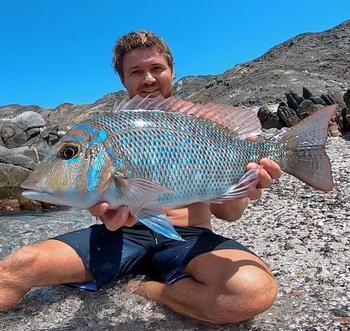 Таких необычных и красивых рыб вы ещё не видели