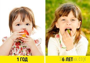 Как без слез и истерик приучить ребенка правильно питаться