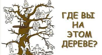 Тест: Найдите себя на этом дереве и узнайте свое положение в обществе