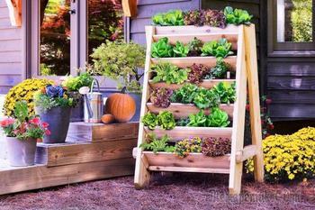 Эти конструкции нравятся всем дачникам. Выберите одну из 20 лучших идей для сада