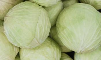 Капустная диета: как похудеть без вреда для здоровья