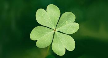 5 примет на удачу перед любым делом