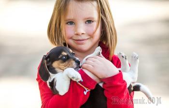 Оля и щенок