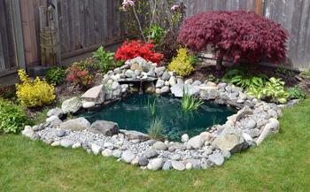 Оформление водоёма в саду