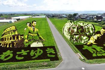 Японская деревня, где каждый год создают огромные картины на рисовых полях
