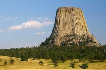 Исследователи рассказали: «Башня Дьявола» — остатки древнего дерева