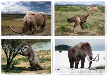 Большой обзор доисторических животных, которые обитали на Земле миллионы лет назад