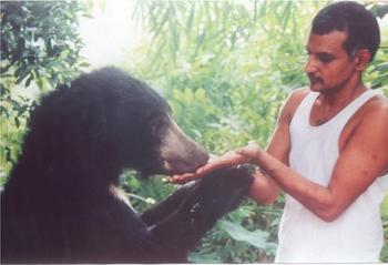 Индийская семья приютила сотни осиротевших диких животных, превратив свой дом в заповедник