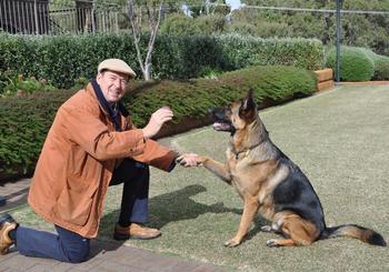 Закон о содержании собак: правила содержания собак, основные тезисы закона