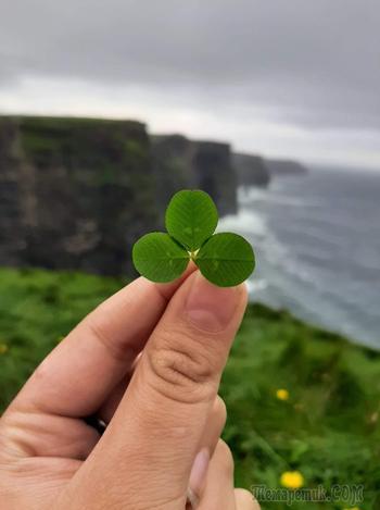 Неожиданное путешествие в Ирландию. Дублин