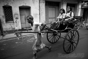 Последние рикши Калькутты в фотопроекте Палани Мохана