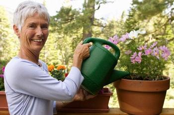 Как организовать правильный уход за комнатными растениями