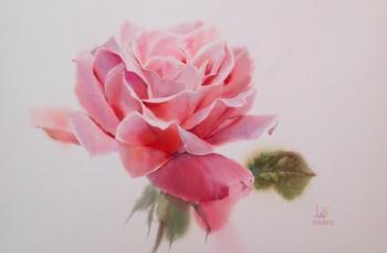 Чудесные акварельные розы от художника Sattha Homsawat (LaFe)