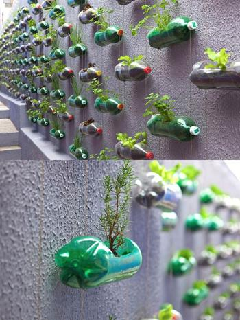 24 Гениальные идеи использования старых пластиковых бутылок