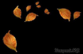 Осенние мысли (Стих)