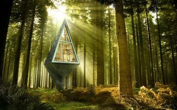 13 удивительных домов на деревьях, в которых захочет жить каждый