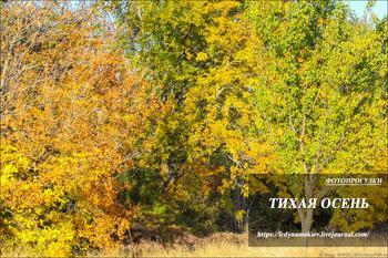 Фотопрогулки.  Тихая осень