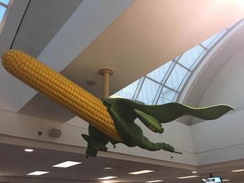 20 примеров тех странностей и нелепостей, что могут произойти только в аэропорту