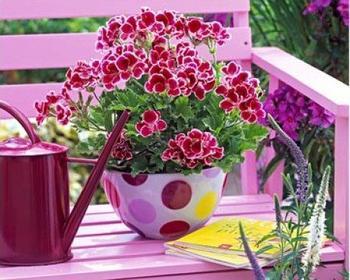 Оригинальные цветники и вазоны