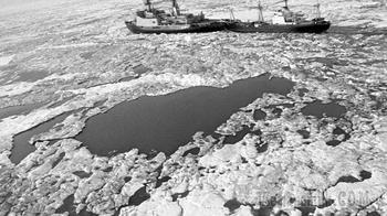 Арктика не для всех: Севморпуть закроют для иностранцев постепенно