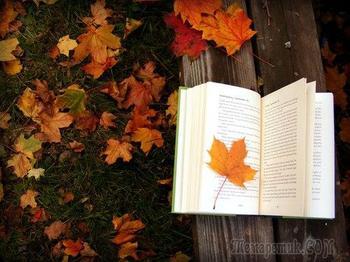 Осень - это портрет...(Стих)