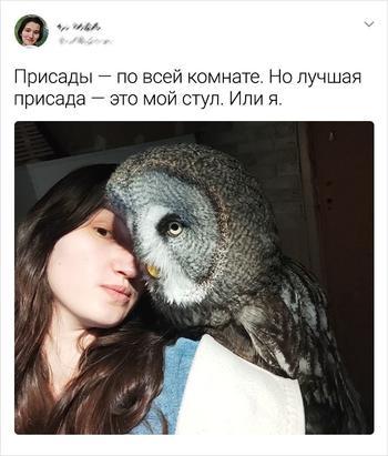 Девушка спасает диких птиц и рассказывает о сумасшедших буднях в окружении пернатых