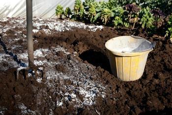 Известковать или нет? Как правильно и в какие сроки провести известкование почвы