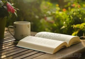 Книга (Стих)