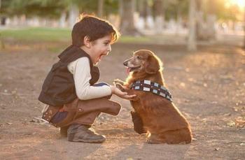 Почему ребёнку нужна собака