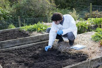 Что нужно знать о pH почвы для цветущего сада и урожайного огорода