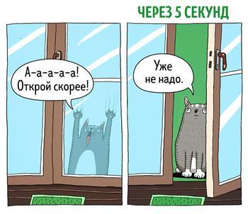 14 комиксов о том, что коты — самые противоречивые создания на планете