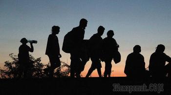 Беженцев не примем: Австрия бросила вызов Германии