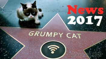 Новости от Сердитого Кота (Grumpy Cat), Апрель 2017