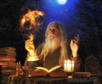 Магия - бабушка науки и похожи ли мы на обезьян?