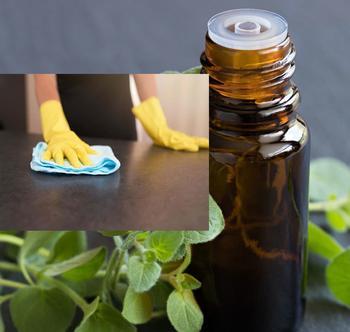 Почему делать уборку с маслом орегано это хорошая идея
