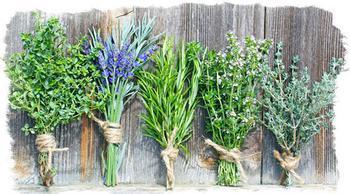 Растения-обереги у славян